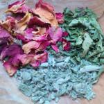 Tid til te – find dine urter frem fra gemmerne!