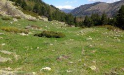 De franske Pyrenæer – bjergtinder & smuglerruter. Vandreferie fra 6-13/9, 2019